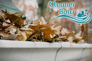 gutter-cleaners-bow